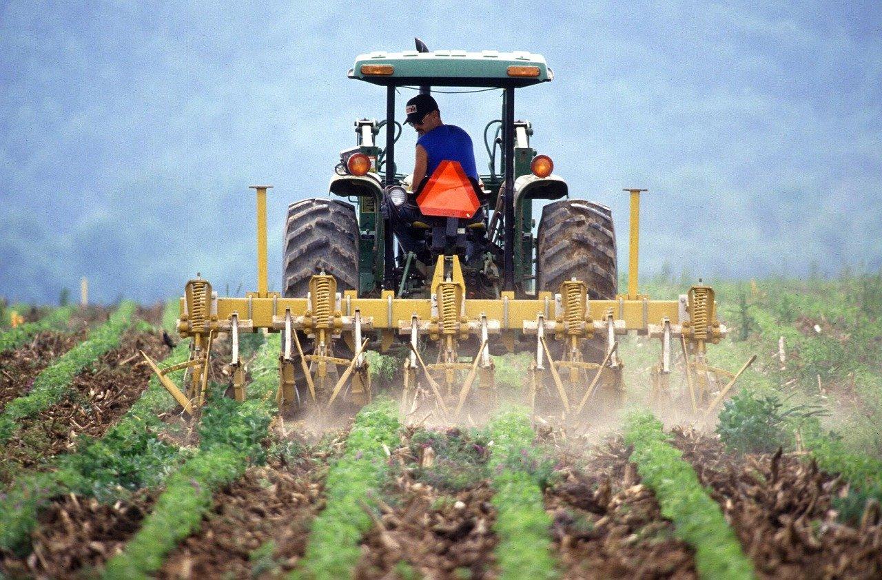 rolnik praca
